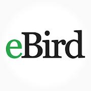 eBird Mindo Ecuador